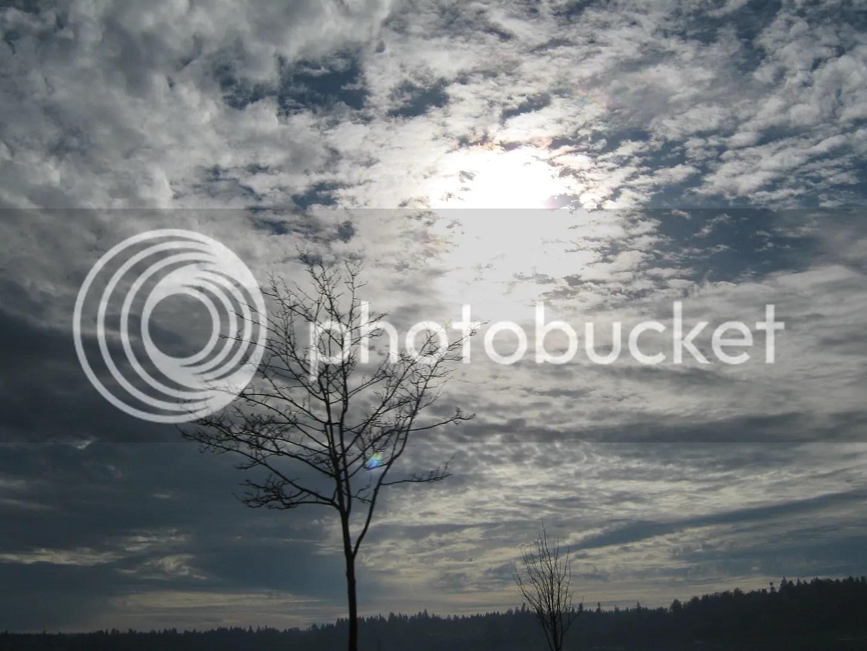 photo IMG_2688_zpsp6cl7yfp.jpg