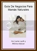 Guía De Negocios Para Mamás Naturales