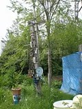 St. Ann's Allotments,Ecoworks