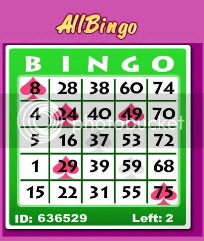 bingo på nätet