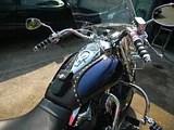 2004 VTX1300R Whaletail Bib