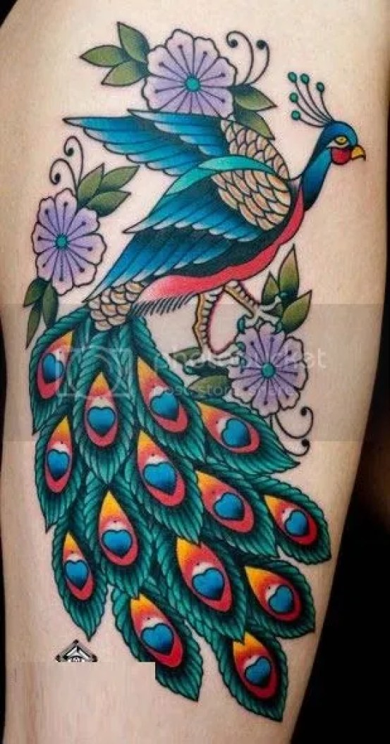 best peacock tattoos designs ideas