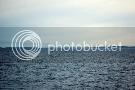 Pacific Ocean Sans Whales