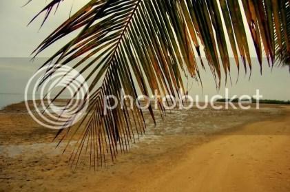 Beach tide plain near Kuliouou on Oahu, Hawaii.