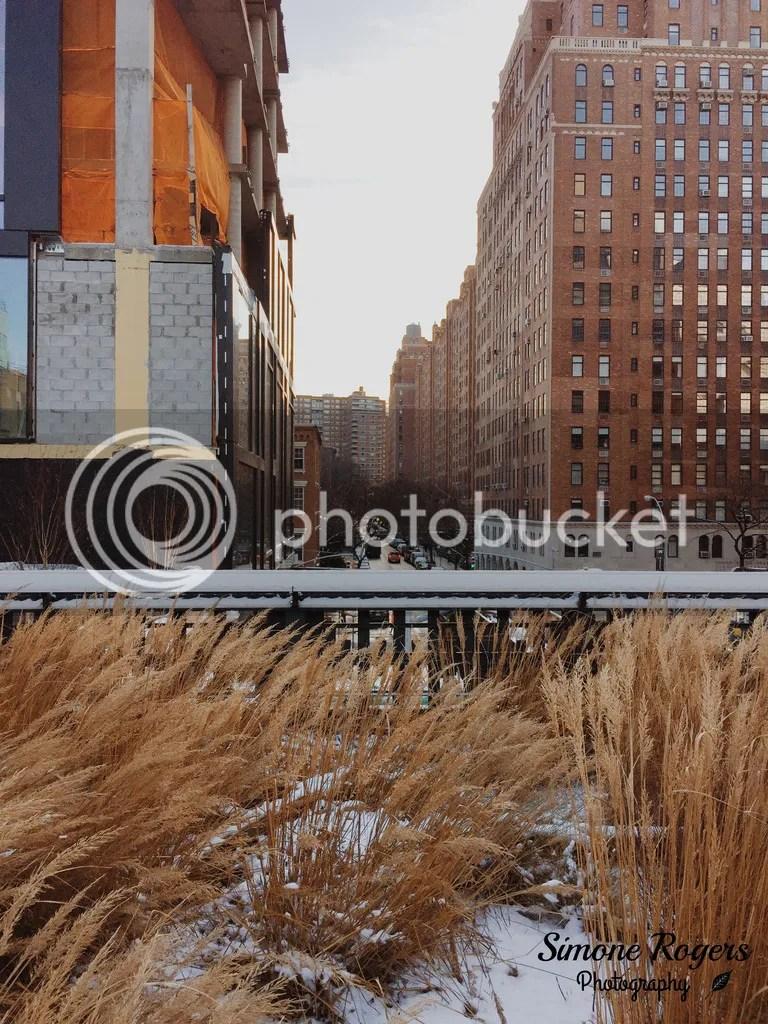 photo The High Line sig 4_zpsne3hhrbl.jpg