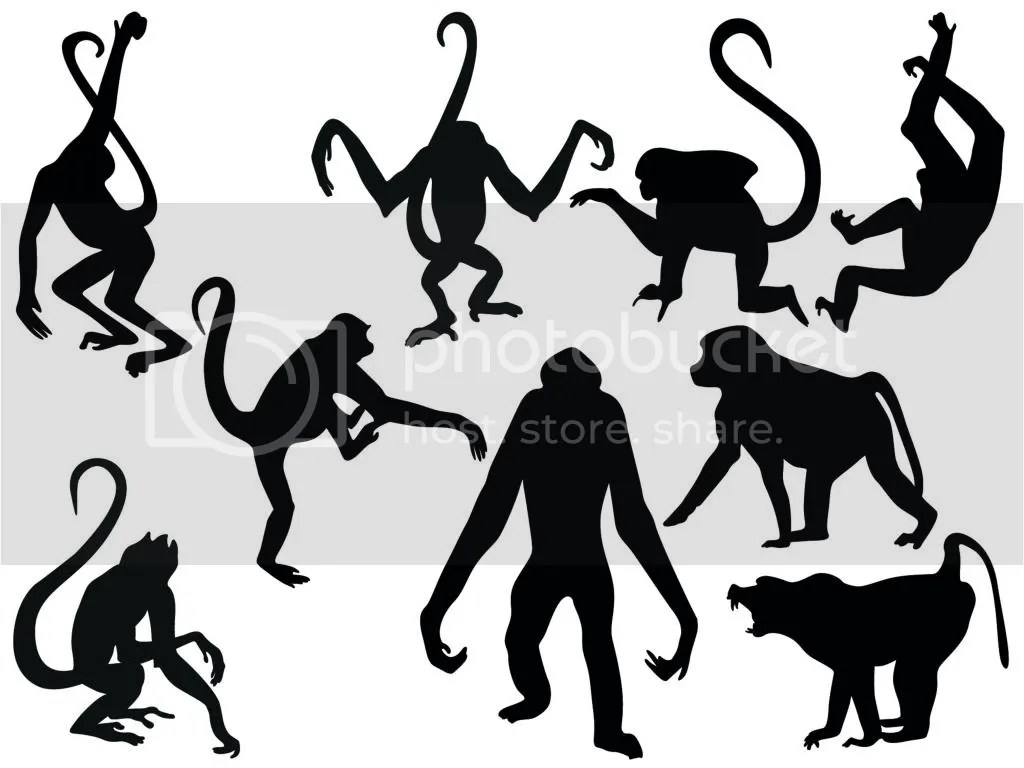 Hanging Monkey Silhouette