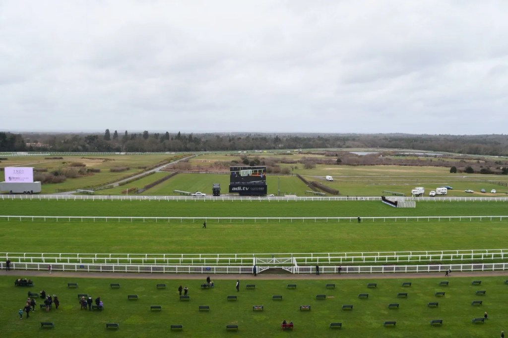 View from Ascot race box