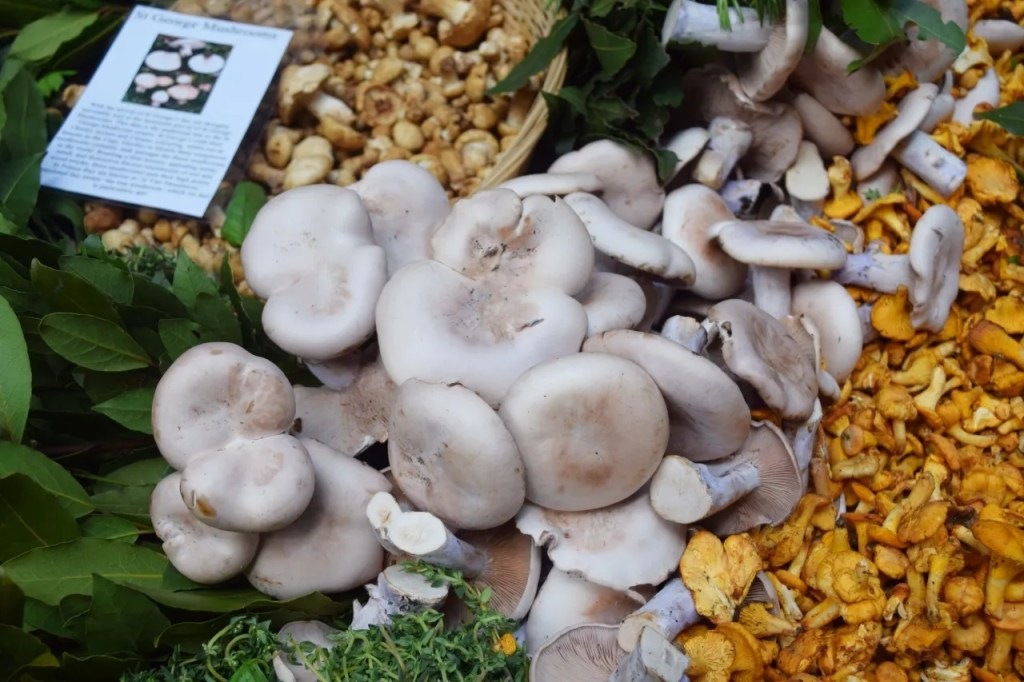 Mushrooms Borough Market London | The LDN Diaries