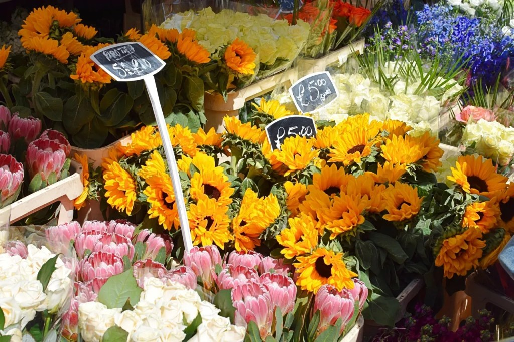 Sunflowers columbia road flower market