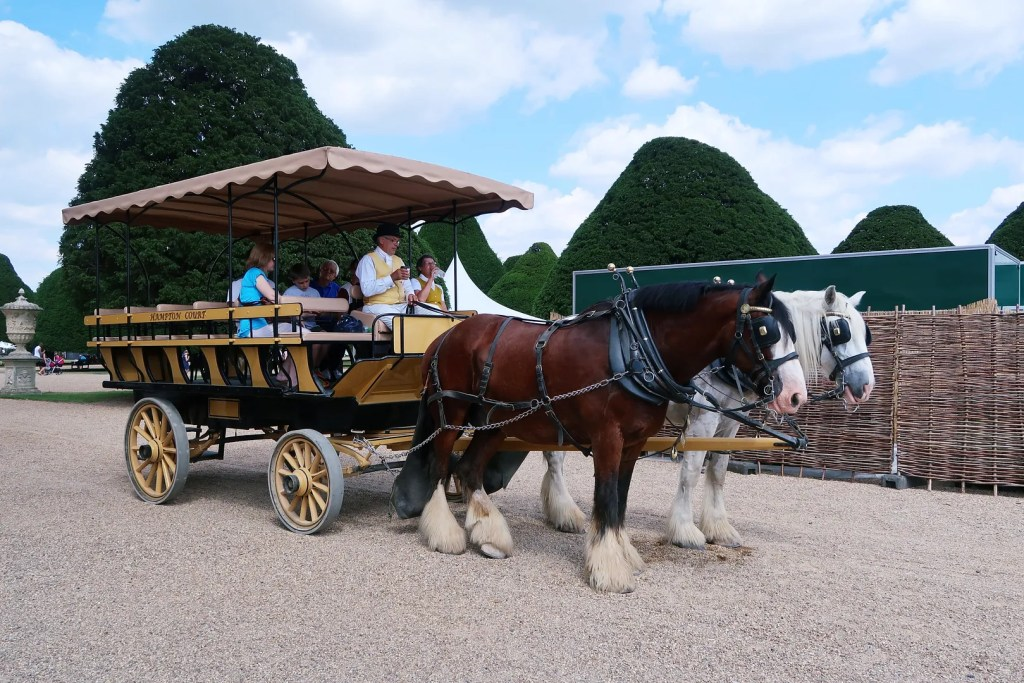 Hampton Court Palace Shire Horses