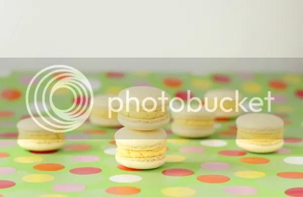 custard cream macs