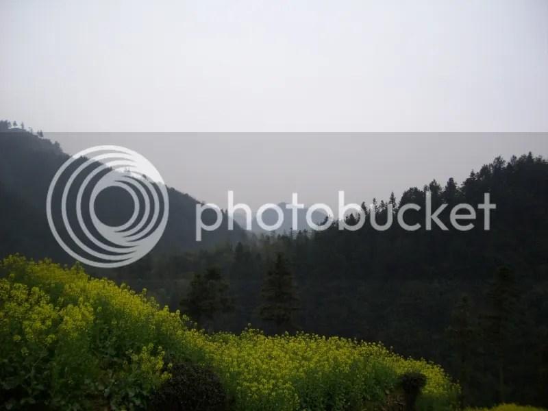 photo 102_0978s_zpsac8ab92f.jpg