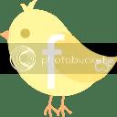 Facebook bird