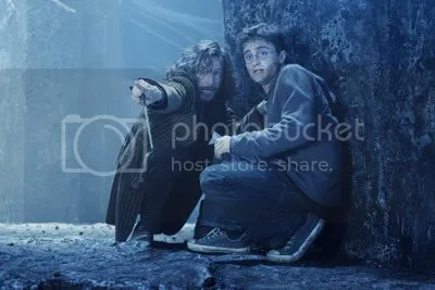 sirius and harry