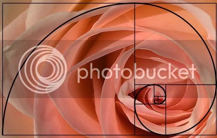 Bí ẩn Tỉ lệ Vàng Ф : Mật mã của vũ trụ - Phần 4 - www.toantrunghoc.com (Ảnh 32)