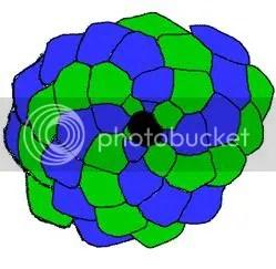 Bí ẩn Tỉ lệ vàng Ф, mật mã tạo thành vũ trụ - www.toantrunghoc.com (Ảnh 16)