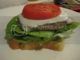 Earth Fare Natural Mushroom Rice Burger, topped with melted non-dairy provolone cheese, bibb lettuce, and tomato