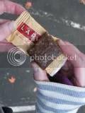 Lärabar Peanut Butter Cookie (snack size)