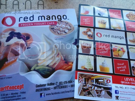 Smart Concept Red Mango Frozen Yogurt Cafe