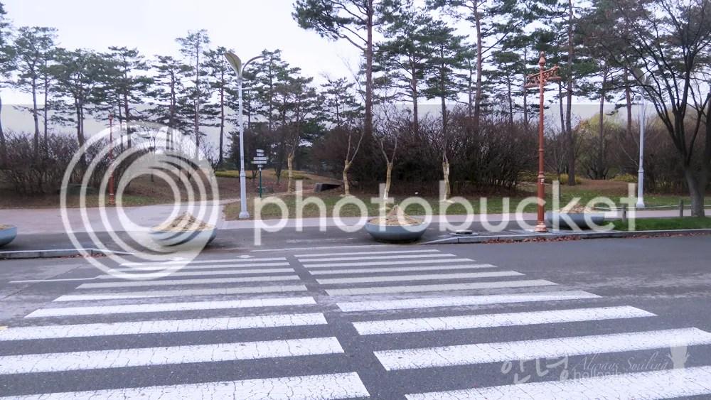 photo IMG_8122 copy_zpshcjpwmyl.jpg