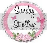 Sunday Strolling Blog Hop