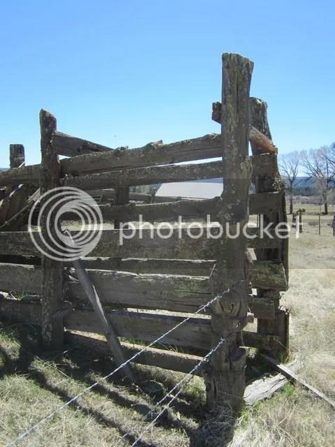 Livestock chute