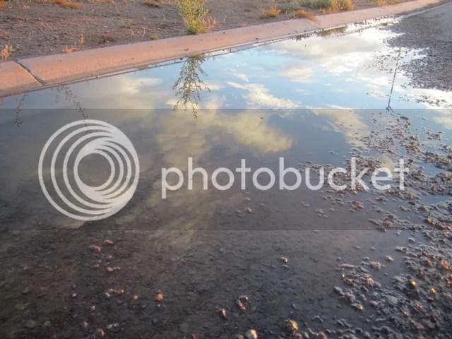 Wayside puddle