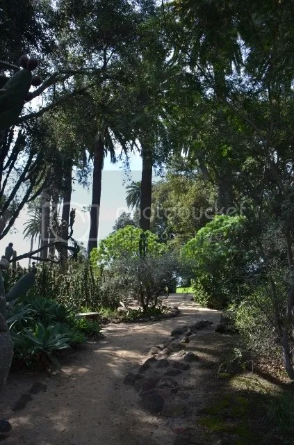 Garden path photo DSC_0095_zpsjnqptlnm.jpg