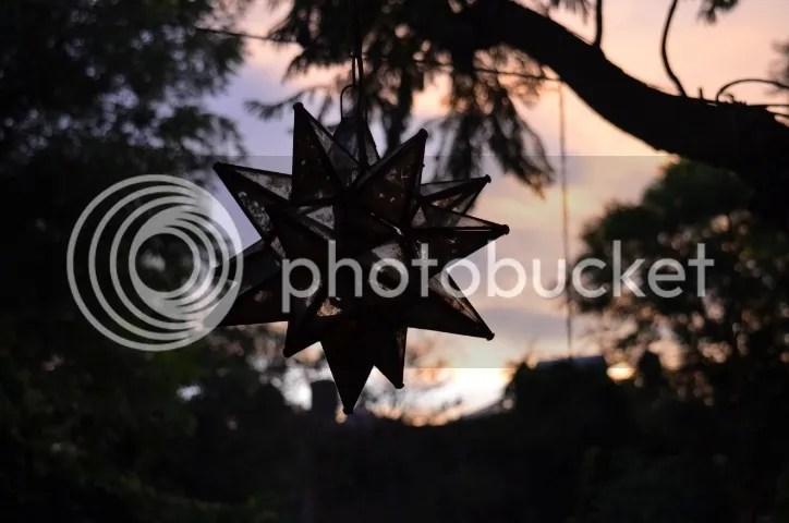 photo DSC_0161_zps0a0ew5er.jpg