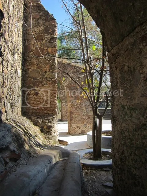 Amphitheatre.2