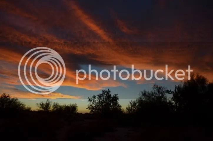 photo DSC_0026203_zpscmu4gevl.jpg