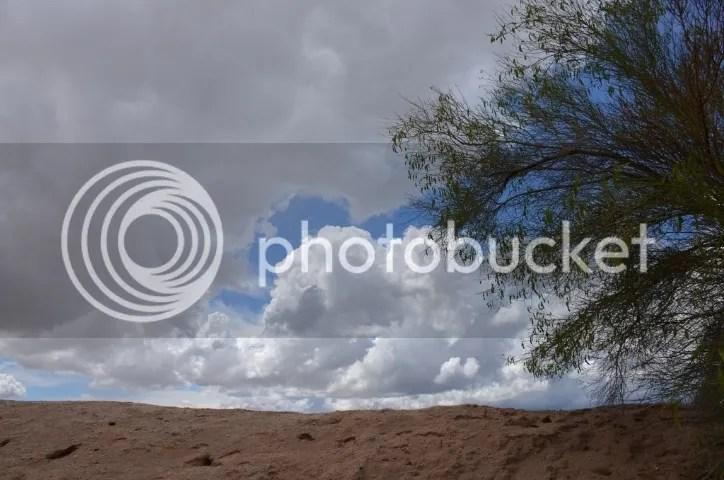 photo DSC_0079201_zpszjl9m6sr.jpg