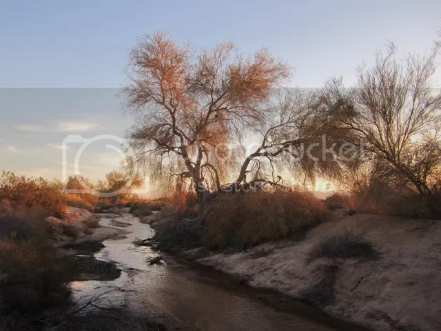 Steams in the desert