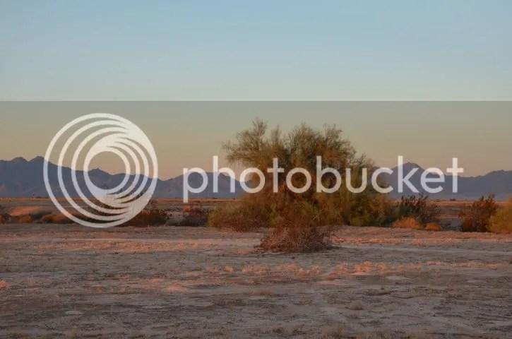 photo Sonoranmorningglow_zps87a980e8.jpg