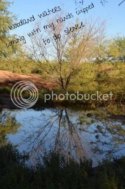 photo 76409213-8bfc-404d-b905-fac68ef8c617_zpsx2jk4b9i.jpg