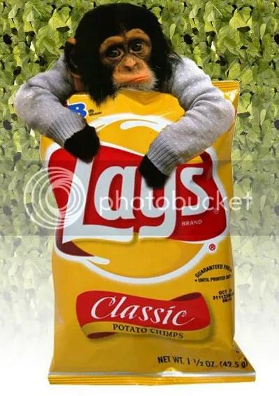lays-potato-chips-regular