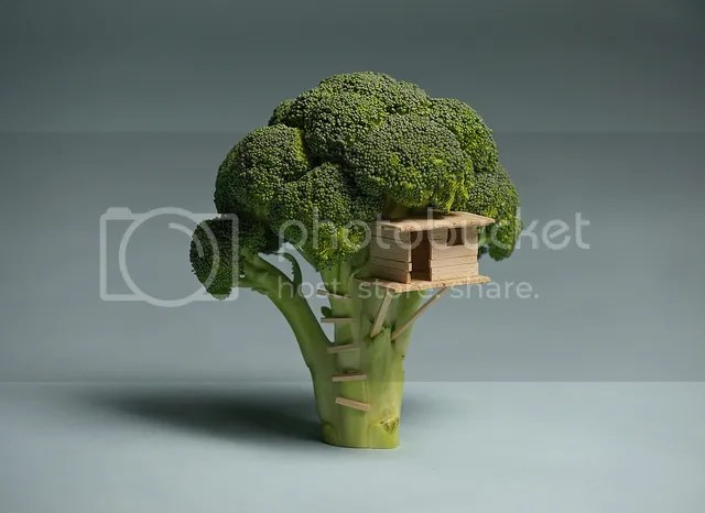 photo broccoli-treehouse_zpsc806cfc4.jpg