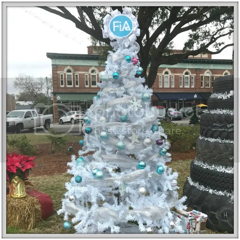 A tour of our town's Christmas Trees on the Square.