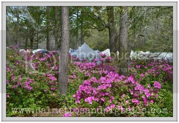 Flowertown Festival Booth and Tips for Participating in a Craft Show - Palmettos and Pigtails