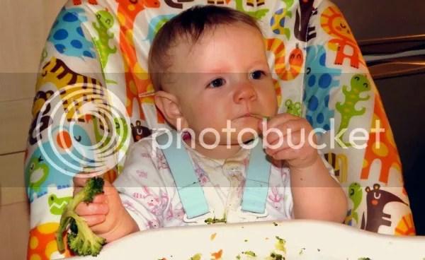 photo baby-friendlyrecipes_zpsd7f8905c.jpg