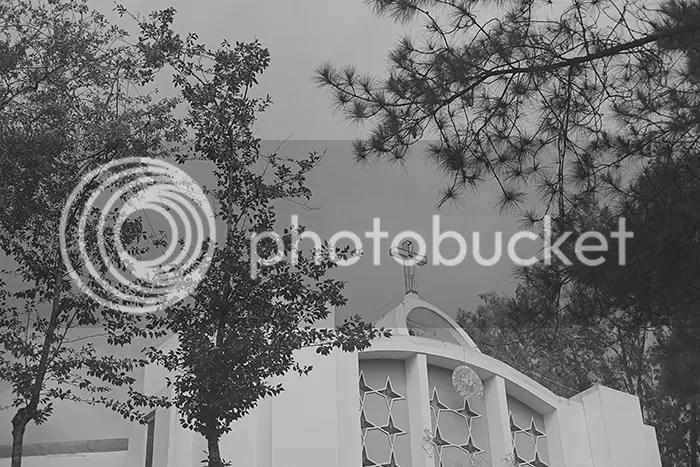 photo wedoitforlove-james--jen-19_zpsdguvwz3f.jpg