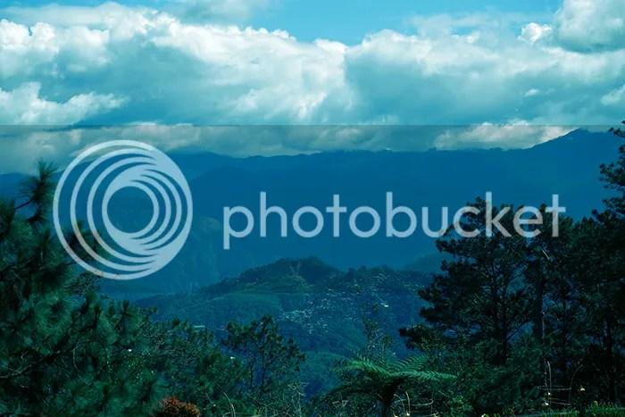 photo wedoitforlove-james--jen-41_zpsgjuxefpc.jpg