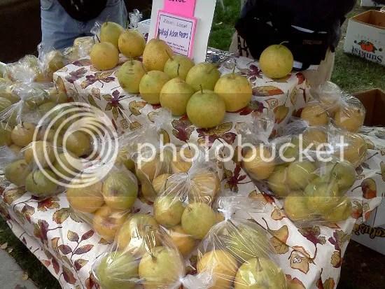 farmers market 8