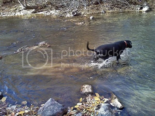 Ashland in the river