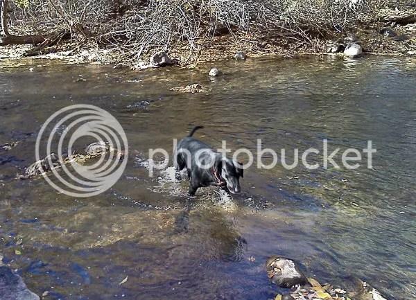 Ashland wading