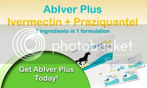 AbIver Plus