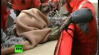 dog rescued after tsunami