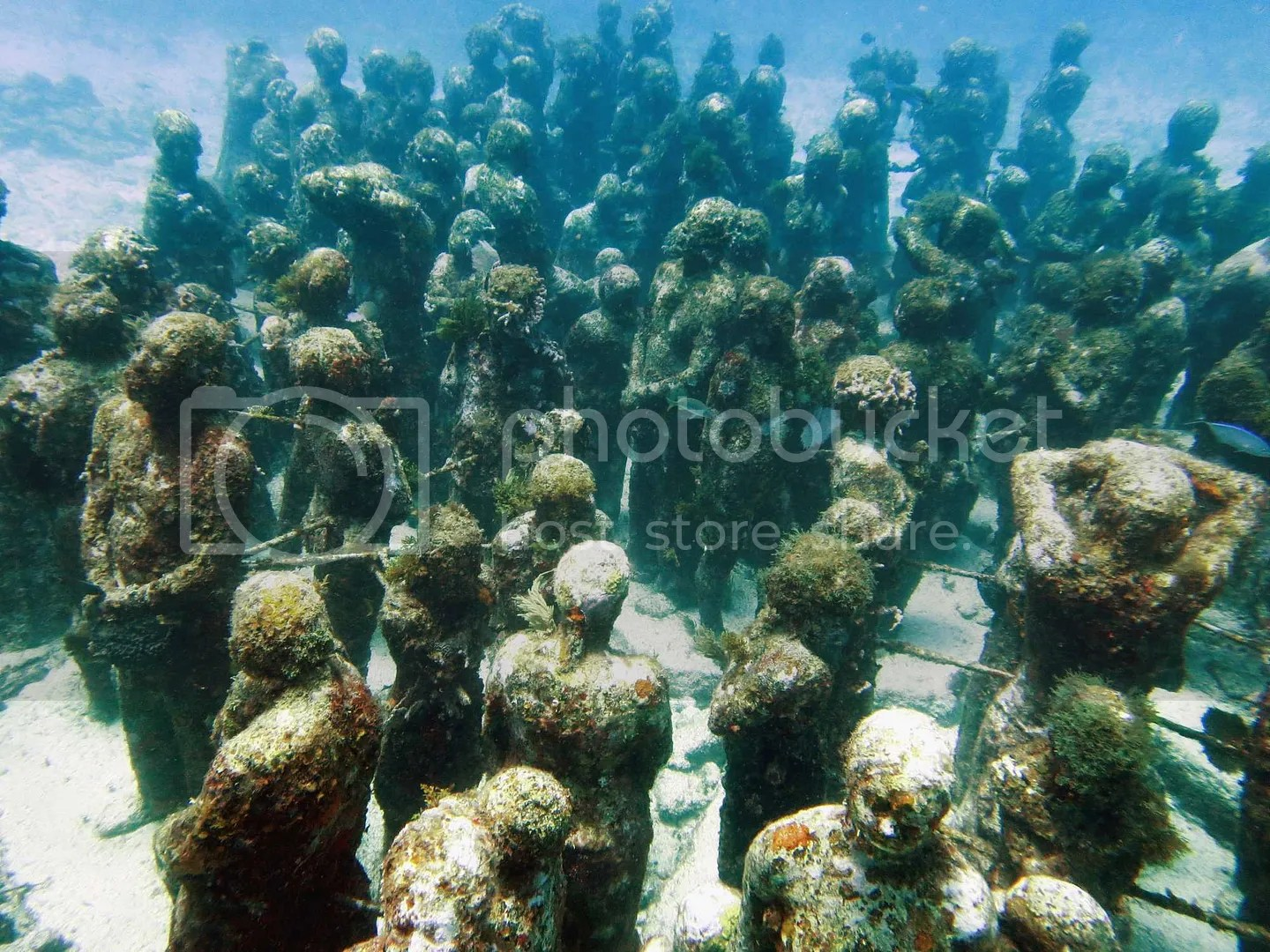 People under the water