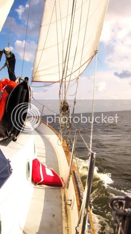 Sailing on Cinco de Mayo