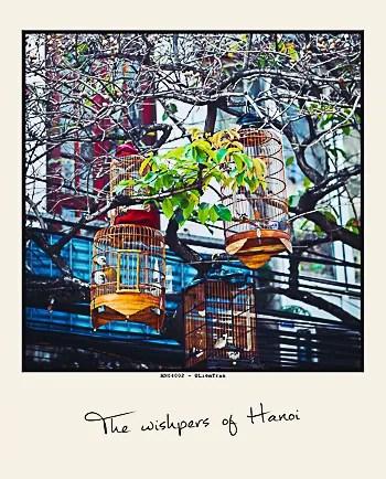 photo Postcard-2_zps30d50f9f.jpg